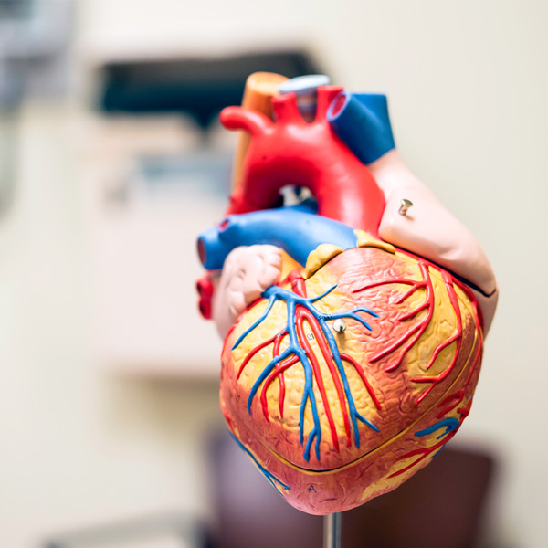 Cardiac treatment in India